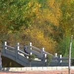 В парке Хэйхэ есть и мосты