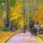 Дорожка в парке Хэйхэ