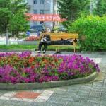 В городе Хэйхэ очень много красивых клумб с цветами