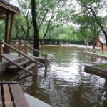 Хэйхэ - наводнение_3