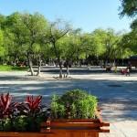 Ботанический сад Хэйхэ