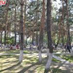 Парк в Хэйхэ